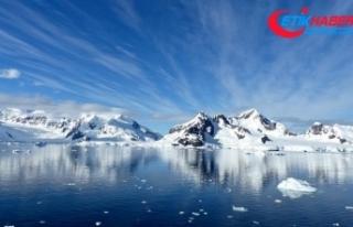 Buzulların altından 40 bin yıllık bitki fosilleri...