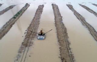 Ceyhan Nehri taştı ev ve tarlalar su altında kaldı