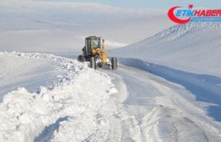 Doğu Anadolu'da kış: 44 yerleşim yerine ulaşım...