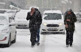 Doğu Anadolu Bölgesi'nde kar yağışı