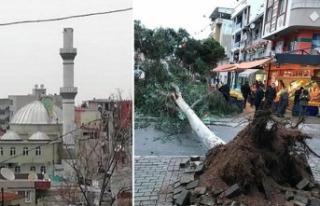 Dün Antalya bugün İzmir! Ağaçlar devrildi, çatılar...