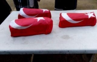 Hayata 1 gün tutunabilen üçüzlere Türk bayraklı...