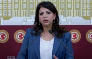 HDP'li Sibel Yiğitalp'e 26 yıla kadar...