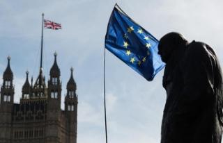 İngiliz milletvekillerinden polise çağrı