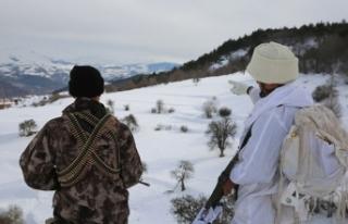 Karadeniz'de PKK'ya büyük darbe: Sözde...