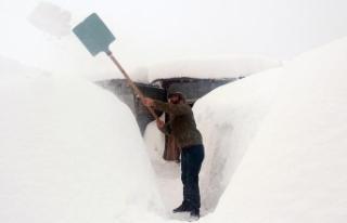 Ovacık'ta kar kalınlığı 3 metreye ulaştı
