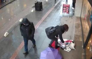 Şalıyla sokak köpeğinin üzerini örttü