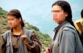 Teslim olan PKK'lı, örgütün kirli yüzünü...