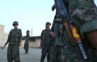 YPG/PKK'nın çocuk sömürüsü sürüyor