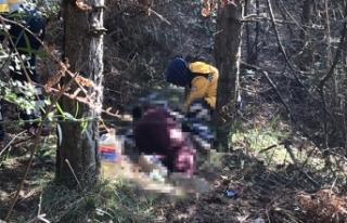 Arnavutköy'de ormanlık alanda ceset bulundu
