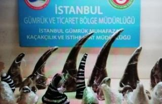 Atatürk Havalimanı'nda 21 gergedan boynuzu...