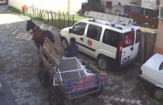 Çocukların at arabasıyla hırsızlık görüntülerine...