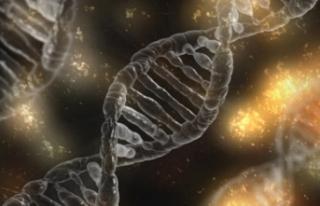 'Genetik hastalıkları düzeltebilmek artık...