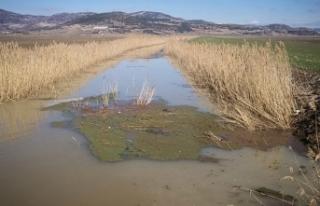 Kestel Ovası'nda 30 bin dekar tarım arazisi...