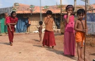 'Myanmar ordusu Arakan'da çocukları canlı...