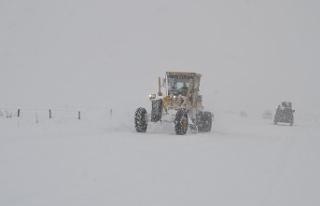 Van ve Hakkari'de kar nedeniyle 63 yerleşim...