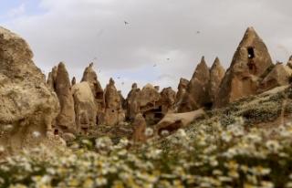 Yerli üretim balonlar 2020'de Kapadokya semalarında...