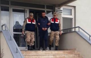 Evden 600 kilo kuru kayısı çalan hırsız tutuklandı