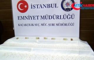 İstanbul'da 10 milyon liralık kobra zehri ele...