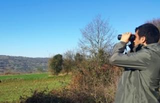 Kaçak avcılar hem sahada hem de sosyal medyada takip...