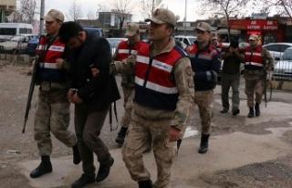 Oklu kirpiyi işkenceyle telef edenler tutuklandı