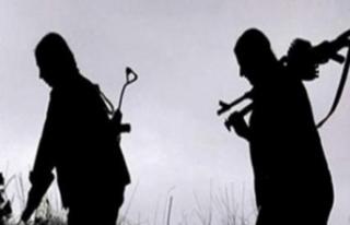 Şırnak'ta 4 PKK'lı terörist teslim oldu