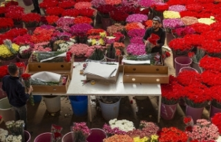Türkiye'den gönderilen çiçekler 20 ülkenin...