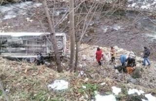 Üniversitelileri taşıyan minibüs uçuruma yuvarlandı:...