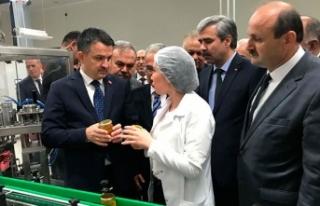 Bakan Pakdemirli: Türkiye'nin bal üretimi 110...