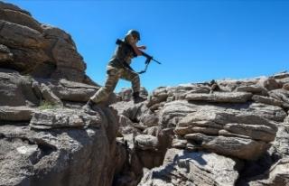 Diyarbakır'da 3 PKK'lı terörist etkisiz...