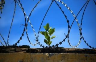 'Dünyada ölüm cezası uygulamaları yüzde...
