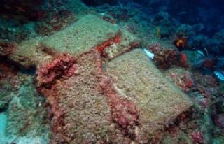 Dünyanın en eski gemi batığı Antalya'da...