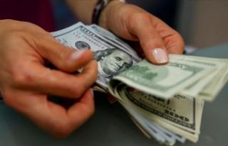 Finansal kesim dışı firmaların net döviz açığı...