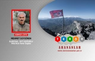 Kırmızı listedeki PKK'lı Soysüren etkisiz...