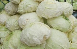 Martta en fazla lahana fiyatı arttı