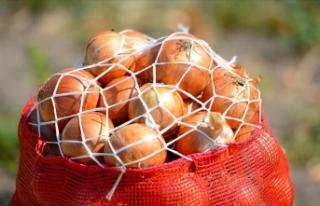 'Nisan sonunda soğan fiyatının 1-1,5 lira...