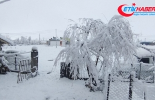 Sivas'ta Nisan karı