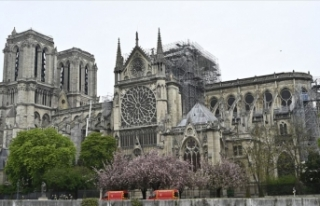 UNESCO, Notre Dame Katedrali'nin renovasyonuna...