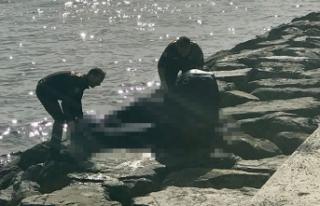 Zeytinburnu'nda denizden ceset çıktı