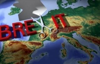 'AB, Brexit yanlılarının yalanlarına müdahale...