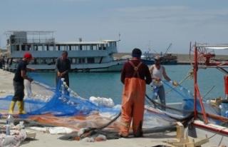 Barınak boşaltıldı, balıkçı mağdur oldu