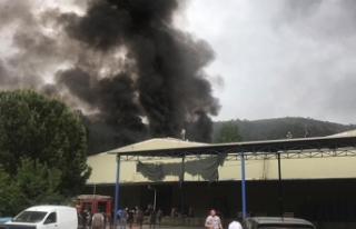 Bursa'da soğuk hava deposunda yangın: 40 ton...