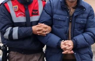 Edirne sınır hattında 3 yılda 546 FETÖ'cü...