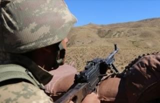 Elazığ'da 2 PKK'lı terörist etkisiz...