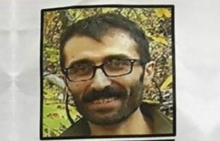 Giresun'da, gri listede aranan PKK'lı terörist,...