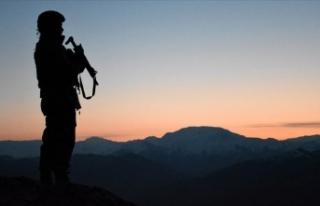 Hatay'da 5 terörist etkisiz hale getirildi