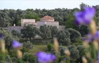 Menteşe Beyliği'nin başkentinde 12 ay kazı...