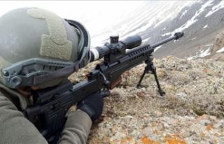 Nusaybin'de 2 PKK'lı terörist etkisiz...