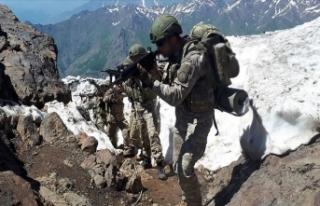 Pençe Harekatı'nda yaralanan 2 asker şehit...