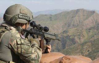 Siirt'te 3 PKK'lı terörist etkisiz hale...
